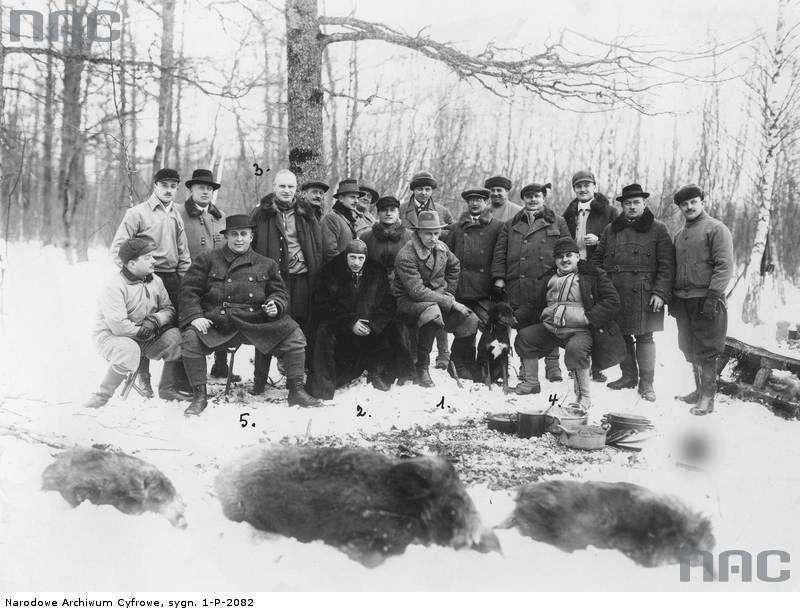 Polnische Jagdgesellschaft (PZŁ)